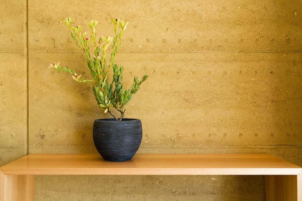 off-form finish of internal rammed earth wall